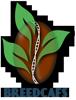 Logo-Breedcafs-100x76