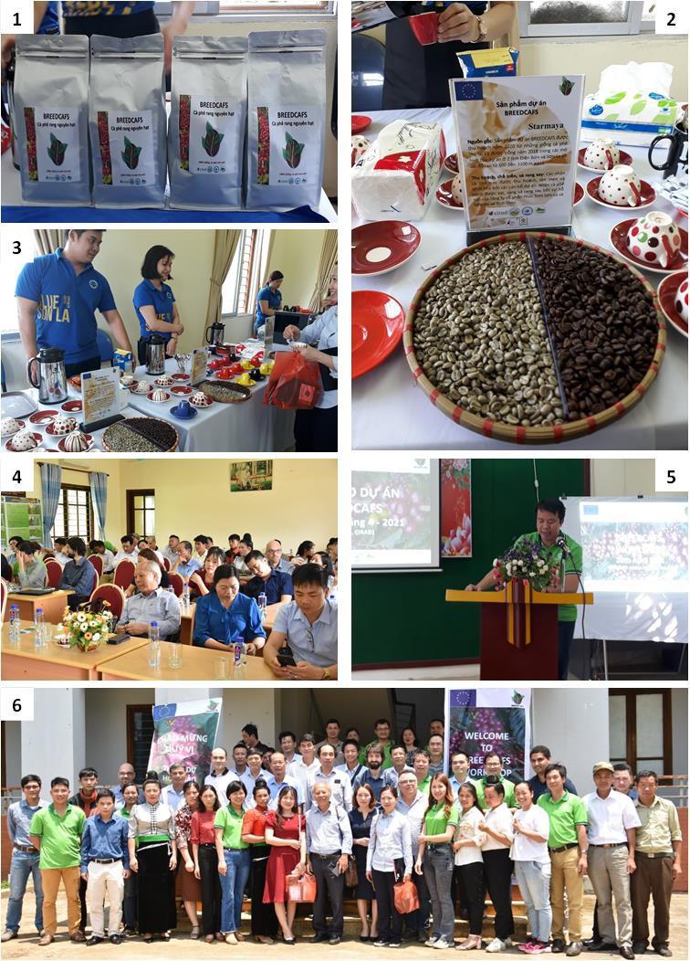 """""""BREEDCAFS-ending""""-meeting-organized-in-Vietnam"""